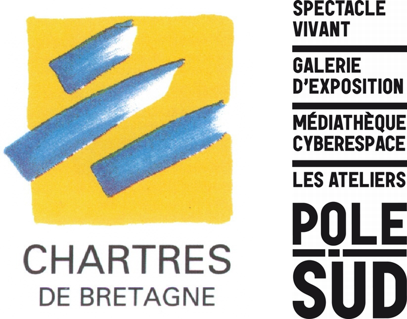 Galerie le carr d 39 art pr sentation for Chartres de bretagne piscine